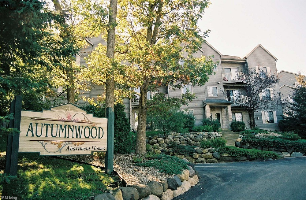 Captivating Autumnwood. Studio ...